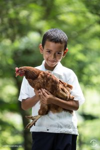 Samaritans Purse Boy with Chicken